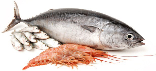Citro bio how to prevent cross contamination of seafood for Fish and seafood